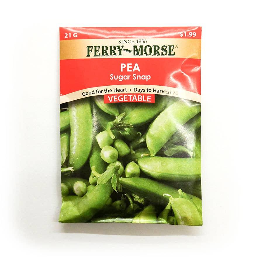 Ferry Morse Pea Sugar Daddy Seed